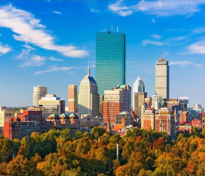 skyline of Boston lined by autumn trees