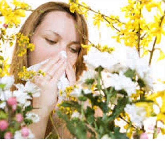 General Spring Cleaning can help with allergies