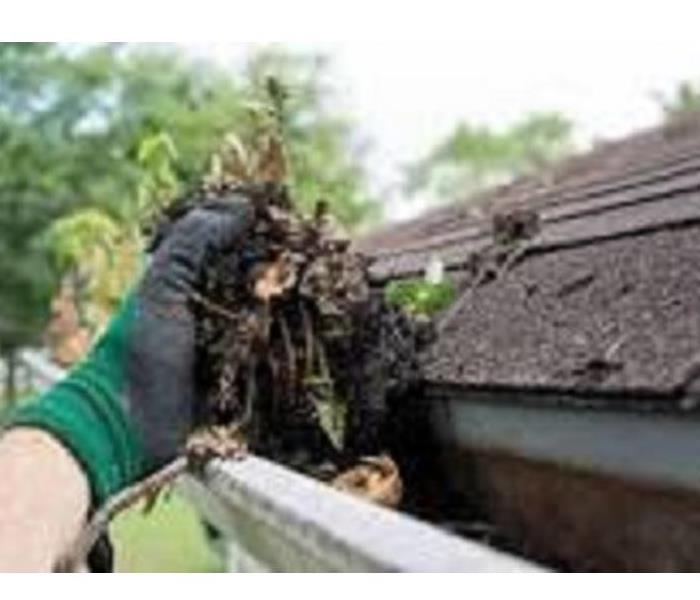 hand grabbing leaves out of roof gutter
