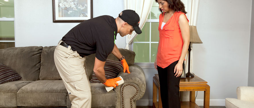 Cambridge, MA carpet upholstery cleaning