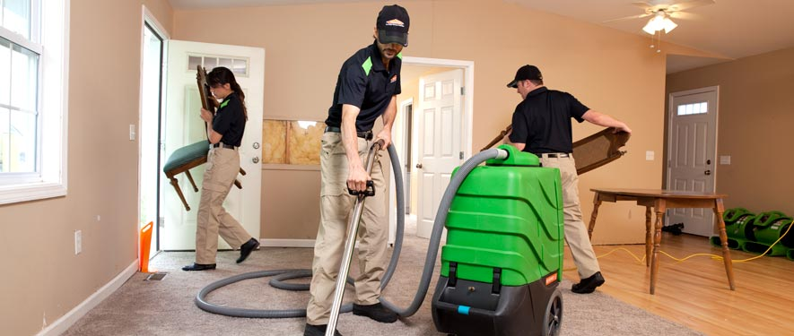 Cambridge, MA cleaning services
